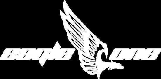eagle1_logo